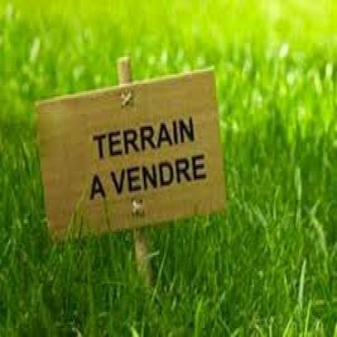 Offres de vente Terrain Charrecey (71510)